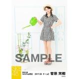 SKE48 2017年8月度 net shop限定個別ランダム生写真5枚セット 菅原茉椰