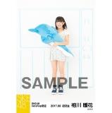 SKE48 2017年8月度 net shop限定個別ランダム生写真5枚セット 相川暖花