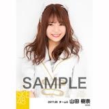 SKE48 2017年9月度 個別生写真「石榴の実は憂鬱が何粒詰まっている?」衣装5枚セット 山田樹奈