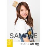 SKE48 2017年11月度 個別生写真「SKEフェスティバル 重力シンパシー」衣装5枚セット 山田樹奈