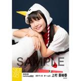 SKE48 2017年12月度 net shop限定個別生写真「2017年 クリスマス」5枚セット 上村亜柚香
