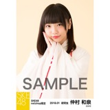 SKE48 2018年1月度 net shop限定個別生写真「巫女」5枚セット 仲村和泉