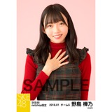 SKE48 2018年1月度 net shop限定個別生写真「ビスチェ」衣装5枚セット 野島樺乃