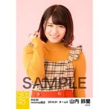 SKE48 2018年1月度 net shop限定個別生写真「ビスチェ」衣装5枚セット 山内鈴蘭