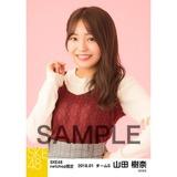 SKE48 2018年1月度 net shop限定個別生写真「ビスチェ」衣装5枚セット 山田樹奈