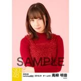 SKE48 2018年1月度 net shop限定個別生写真「ビスチェ」衣装5枚セット 高柳明音
