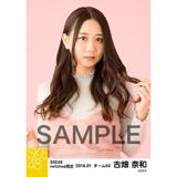 SKE48 2018年1月度 net shop限定個別生写真「ビスチェ」衣装5枚セット 古畑奈和