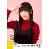 SKE48 2018年1月度 net shop限定個別生写真「ビスチェ」衣装5枚セット 仲村和泉