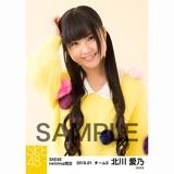 SKE48 2018年1月度 net shop限定個別生写真「ポンポンファー」5枚セット 北川愛乃