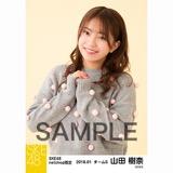 SKE48 2018年1月度 net shop限定個別生写真「ポンポンファー」5枚セット 山田樹奈