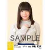SKE48 2018年1月度 net shop限定個別生写真「ポンポンファー」5枚セット 仲村和泉
