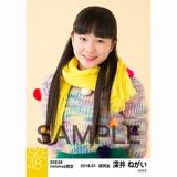 SKE48 2018年1月度 net shop限定個別生写真「ポンポンファー」5枚セット 深井ねがい
