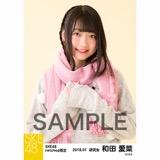 SKE48 2018年1月度 net shop限定個別生写真「ポンポンファー」5枚セット 和田愛菜