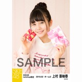 SKE48 2018年2月度 net shop限定個別生写真「バレンタイン」5枚セット 上村亜柚香