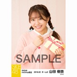 SKE48 2018年2月度 net shop限定個別生写真「バレンタイン」5枚セット 山田樹奈