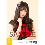 SKE48 2018年2月度 個別生写真「声がかすれるくらい」衣装5枚セット 矢作有紀奈