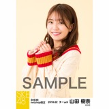 SKE48 2018年2月度 net shop限定個別生写真「ニットワンピース」5枚セット 山田樹奈