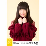 SKE48 2018年2月度 net shop限定個別生写真「ニットワンピース」5枚セット 仲村和泉