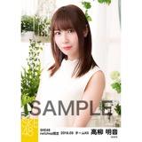 SKE48 2018年3月度 net shop限定個別生写真「ガーデン」5枚セット 高柳明音