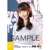 SKE48 2018年3月度 net shop限定個別生写真「夜桜」5枚セット 野島樺乃