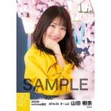 SKE48 2018年3月度 net shop限定個別生写真「夜桜」5枚セット 山田樹奈