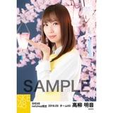 SKE48 2018年3月度 net shop限定個別生写真「夜桜」5枚セット 高柳明音