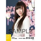 SKE48 2018年3月度 net shop限定個別生写真「夜桜」5枚セット 野々垣美希