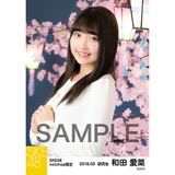 SKE48 2018年3月度 net shop限定個別生写真「夜桜」5枚セット 和田愛菜