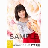 SKE48 2018年5月度 net shop限定個別生写真5枚セットvol.1 小畑優奈