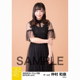 SKE48 2018年9月度 net shop限定個別生写真5枚セットvol.2 仲村和泉
