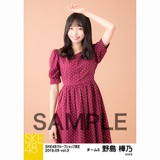 SKE48 2018年9月度 net shop限定個別生写真5枚セットvol.3 野島樺乃