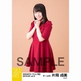 SKE48 2018年9月度 net shop限定個別生写真5枚セットvol.3 片岡成美