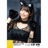 SKE48 2018年10月度 net shop限定個別生写真5枚セットvol.1 北野瑠華