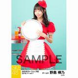 SKE48 2018年11月度 net shop限定個別生写真5枚セットvol.1 野島樺乃