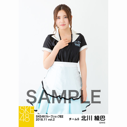 SKE48 2018年11月度 net shop限定個別生写真5枚セットvol.2 北川綾巴