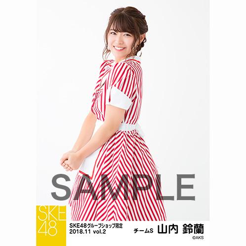 SKE48 2018年11月度 net shop限定個別生写真5枚セットvol.2 山内鈴蘭