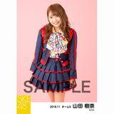 SKE48 2018年11月度 個別生写真5枚セット 山田樹奈