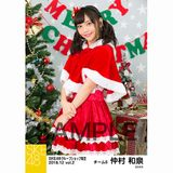 SKE48 2018年12月度 net shop限定個別生写真5枚セットvol.2 仲村和泉