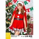 SKE48 2018年12月度 net shop限定個別生写真5枚セットvol.2 山田樹奈