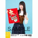 SKE48 2019年1月度 net shop限定個別生写真5枚セットvol.2 中野愛理