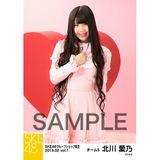 SKE48 2019年2月度 net shop限定個別生写真5枚セットvol.1 北川愛乃
