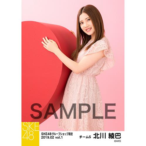 SKE48 2019年2月度 net shop限定個別生写真5枚セットvol.1 北川綾巴