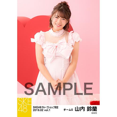 SKE48 2019年2月度 net shop限定個別生写真5枚セットvol.1 山内鈴蘭