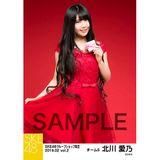 SKE48 2019年2月度 net shop限定個別生写真5枚セットvol.2 北川愛乃