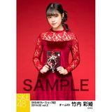 SKE48 2019年2月度 net shop限定個別生写真5枚セットvol.2 竹内彩姫