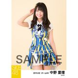 SKE48 2019年2月度 個別生写真5枚セット 中野愛理
