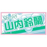 AKB48 41stシングル 選抜総選挙 個別BIGタオル SKE48 type 山内鈴蘭