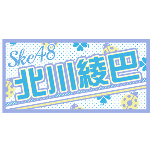 AKB48 41stシングル 選抜総選挙 個別BIGタオル SKE48 type 北川綾巴