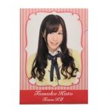 SKE48 2013年10月度個別グッズ 「SKE48 個別クリアファイル」 加藤智子