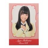 SKE48 2013年10月度個別グッズ 「SKE48 個別クリアファイル」 柴田阿弥